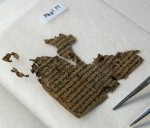 Tefillin Fragment. Photo by Robert R. Cargill.