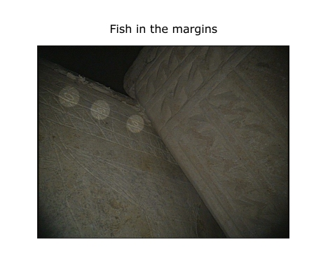"Image from the thejesusdiscovery.org website captioned as ""Fish in the margins""."