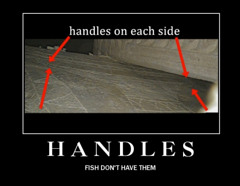 Handles: fish don't have them.