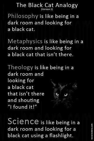 The Black Cat Analogy of Philosophy, Metaphysics, Theology, and Science