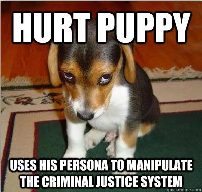 hurt_puppy_meme